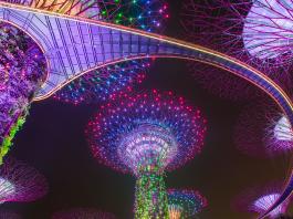Garden By The Bay - Điểm vui chơi nổi tiếng tại Singapore