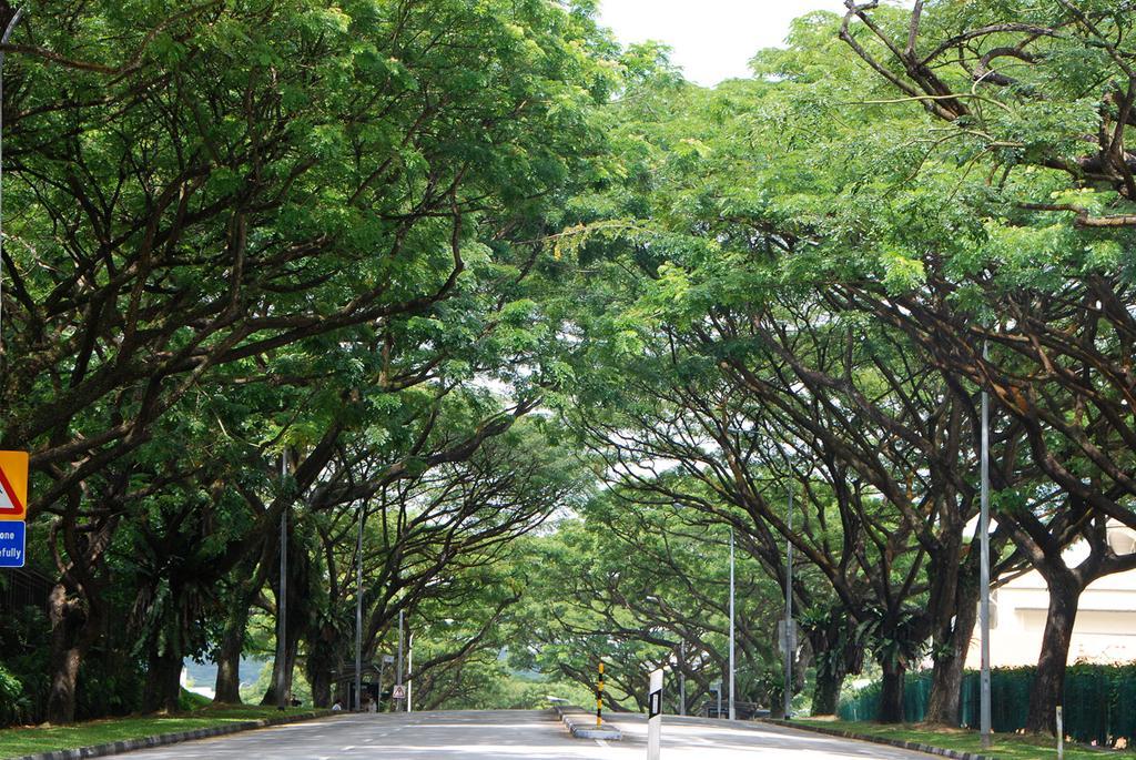 Đường phố Singapore